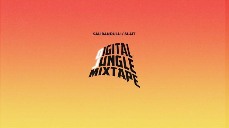 DigitalJungle Cover