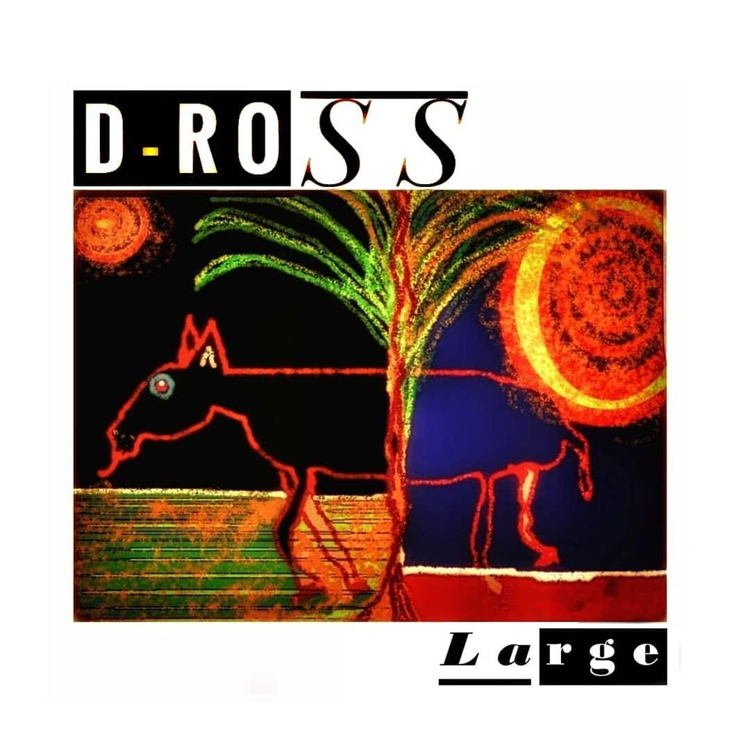 Large è il titolo del progetto strumentale di D-Ross