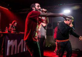 Bomber citro pubblica il singolo audio Gattini