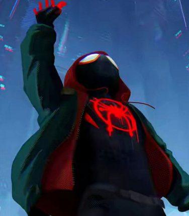 Spider-Man: Into the Spider-Verse per entrare nel nuovo film dell'Uomo Ragno