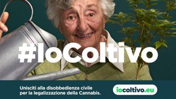 #ioColtivo, l'iniziativa di Matteo Gracis