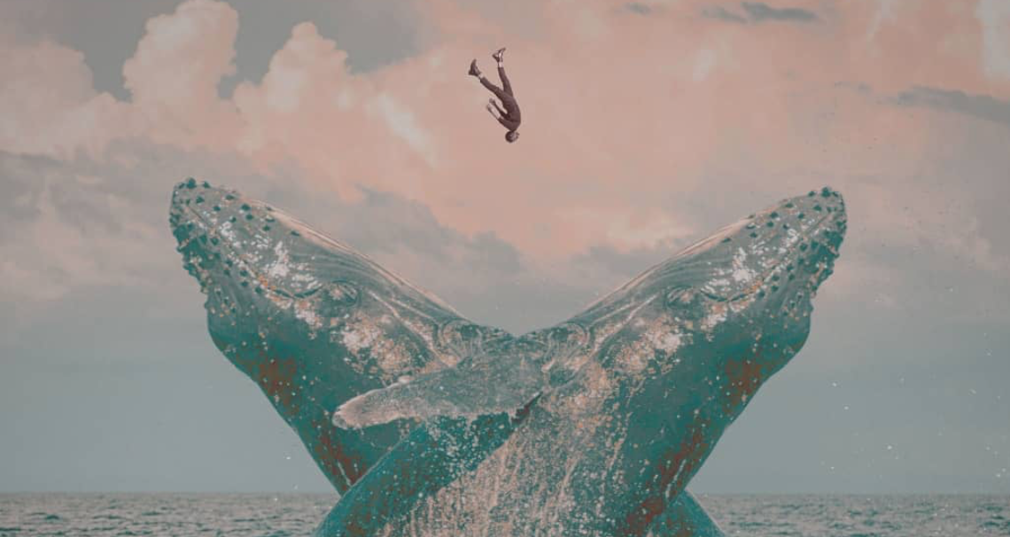Blue Whale Rakno