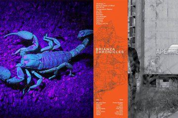 Aldebaran Records pubblica i progetti di Ape e Novembre87